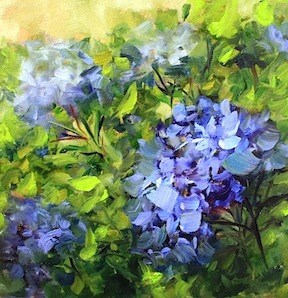 """Blue Kiss Hydrangeas"" original fine art by Nancy Medina"
