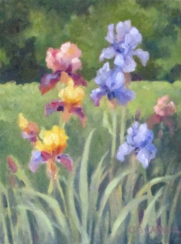 """Iris in the Garden"" original fine art by Claire Beadon Carnell"