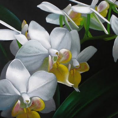 """Orchids 6x6"" original fine art by M Collier"