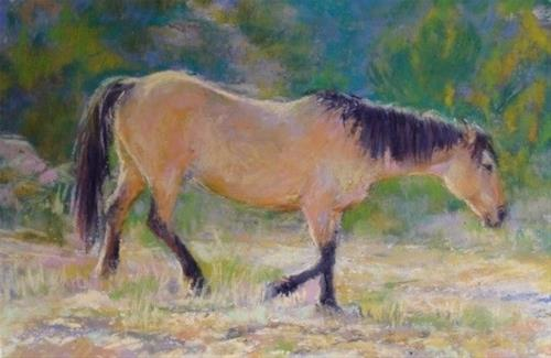 """Pryor Buckskin Mare"" original fine art by Trish Stevenson"