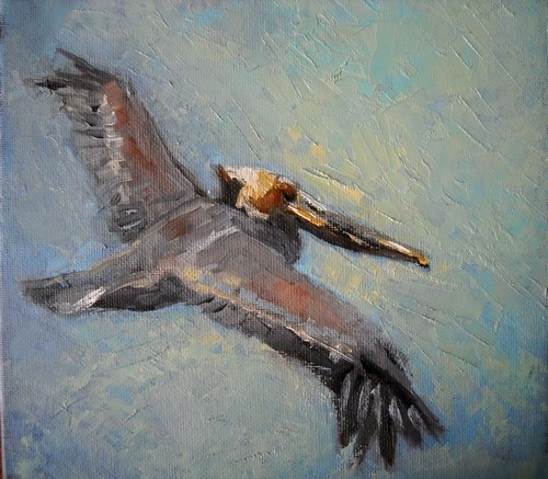 """Pelican Painting, Daily Painting, Over the Waves by Carol Schiff, 8x8 Oil"" original fine art by Carol Schiff"
