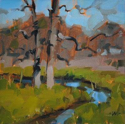 """Inks Creek"" original fine art by Carol Marine"