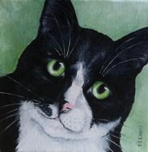 """Bosco"" original fine art by Elaine Lynest"