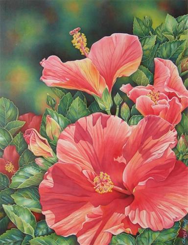 """""""Hybiscus"""" original fine art by Cheryl Plautz"""