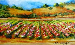 """Fields of Color"" original fine art by JoAnne Perez Robinson"