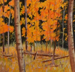 """Aspen Glow"" original fine art by Robert Frankis"