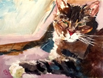 """cat Frodo"" original fine art by Claudia Brandt"