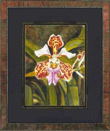 """~ Vanda tricolor, orchid ~"" original fine art by Maga Fabler"