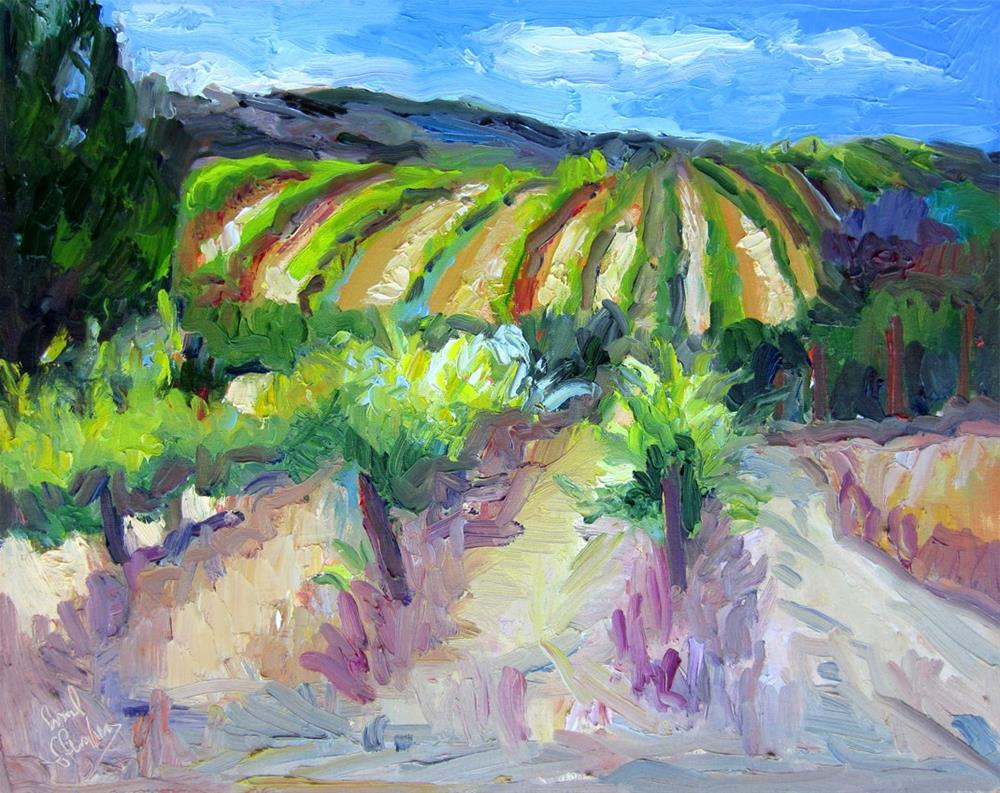 """Vineyard at the Top of the World"" original fine art by Carol Steinberg"