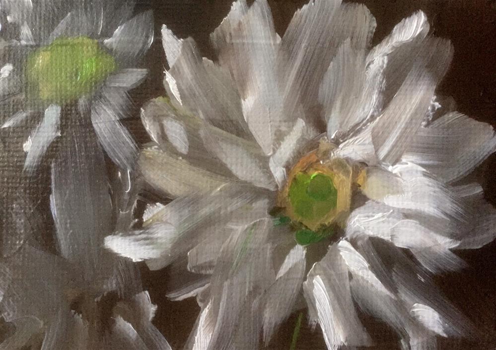 """Daisy Study I"" original fine art by Gary Bruton"