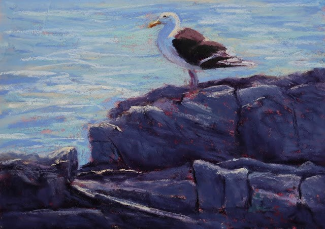 """Gull at Inner Ledge"" original fine art by Sharon Lewis"