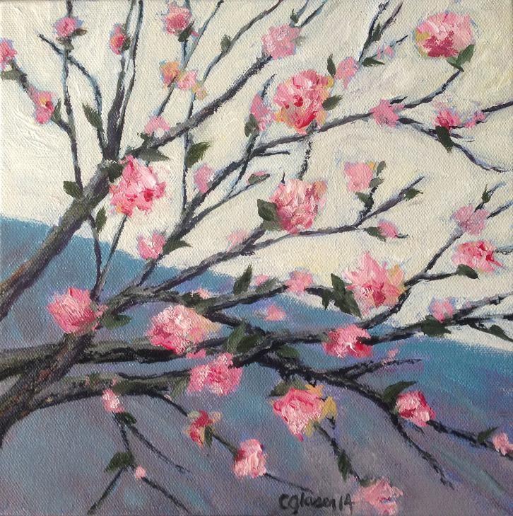 """Cherry Blossoms"" original fine art by christina glaser"