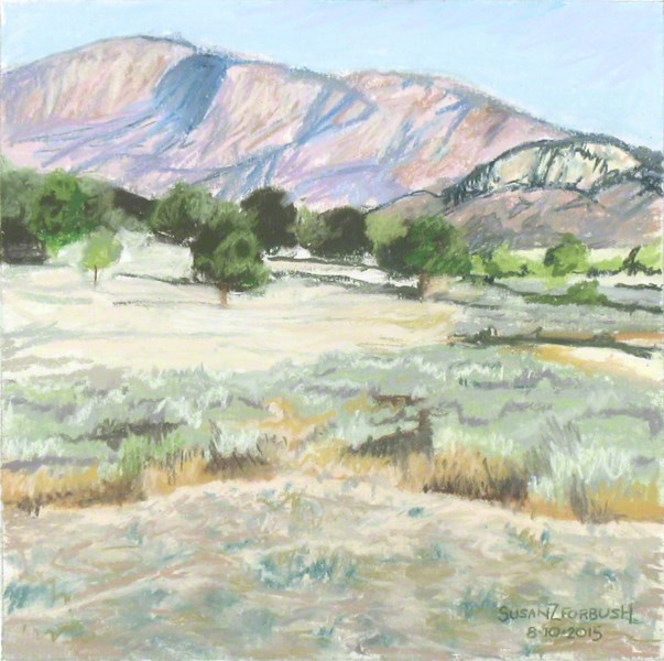 """View from Los Alamos Campground"" original fine art by Susan Z. Forbush"