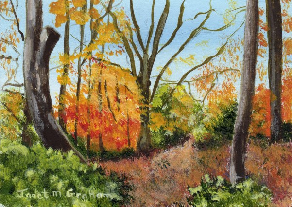 """Autumn Woods ACEO"" original fine art by Janet Graham"