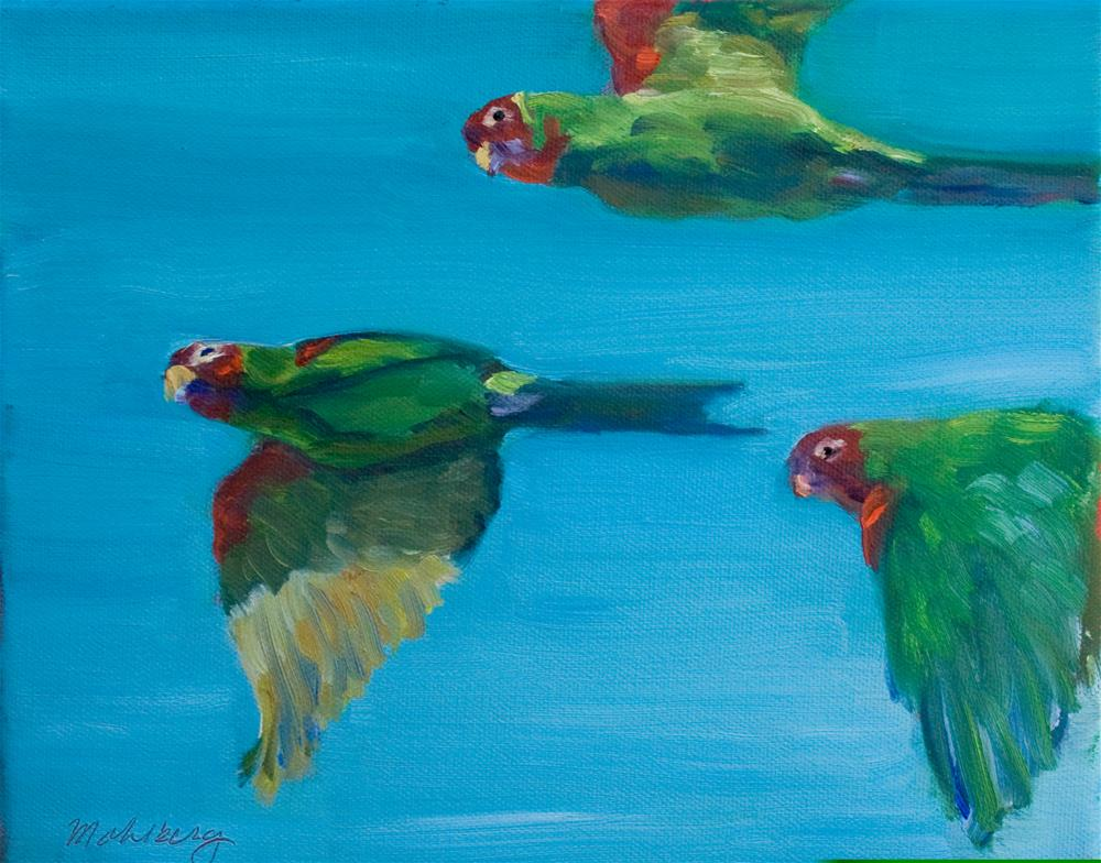 """Red Masked Parakeets"" original fine art by Cynthia Mahlberg"