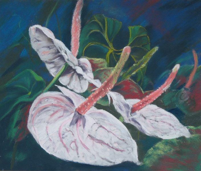 """White Anthuriums in pastel"" original fine art by Marion Hedger"