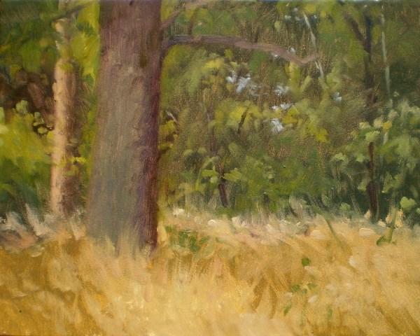 """""""Armadillo's Hangout"""" original fine art by Weston Hobdy"""