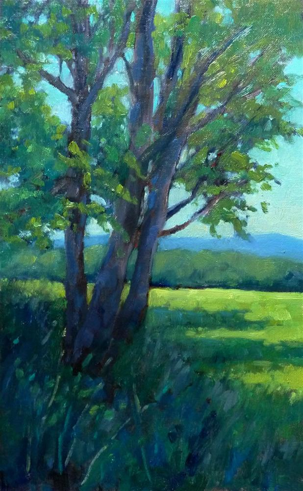 """""""Color in the Shadows 2"""" original fine art by Lisa Kyle"""