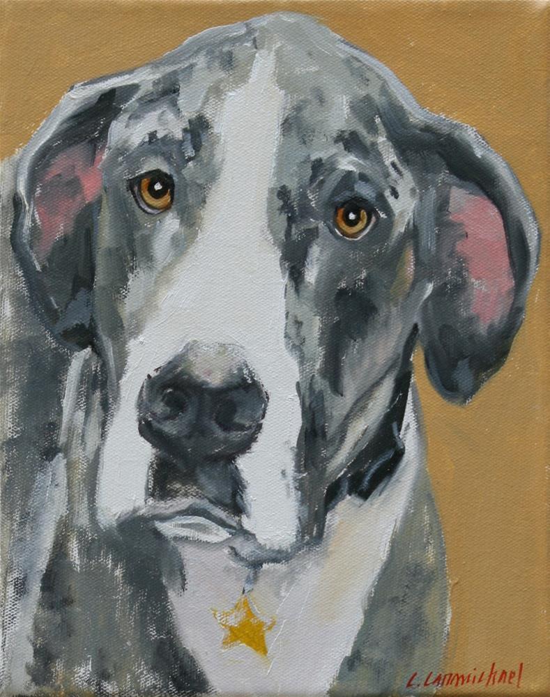 """""""frank"""" original fine art by Carol Carmichael"""