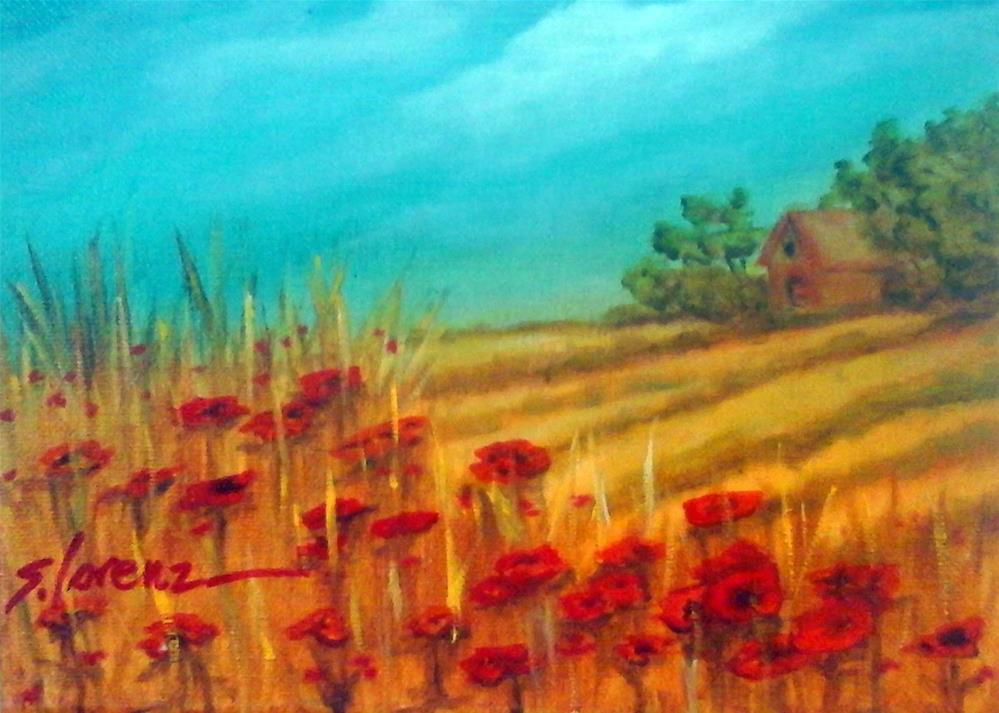 """Italian Poppy Fileds"" original fine art by Sue Lorenz"