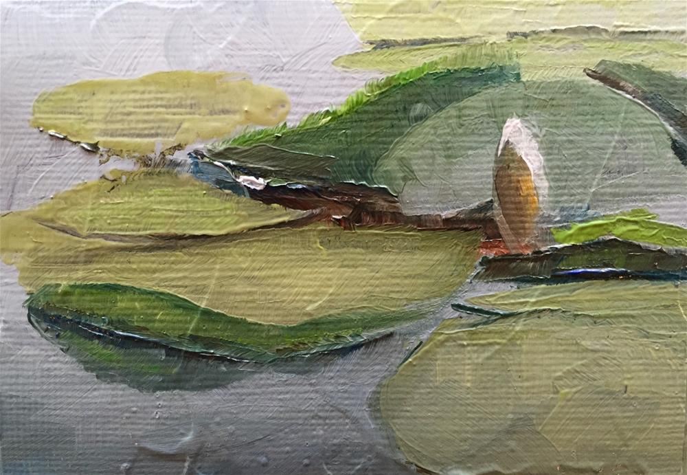 """Lily Study"" original fine art by Gary Bruton"