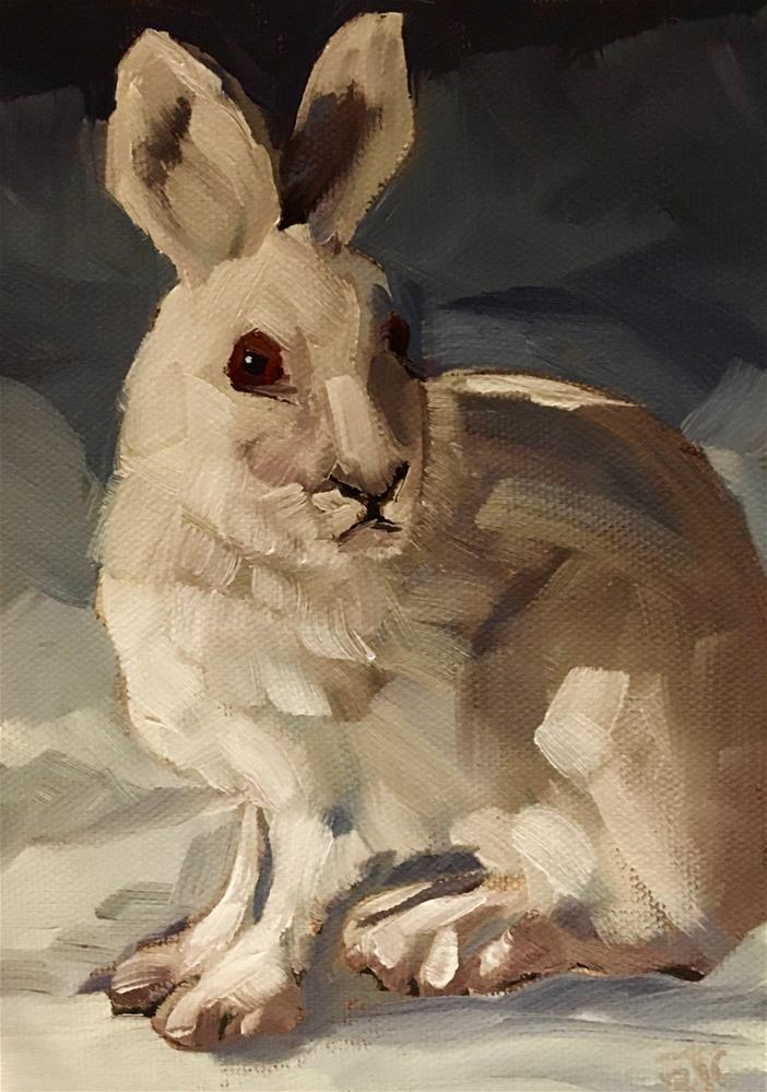 """Snowshoe Hare"" original fine art by Bobbie Cook"