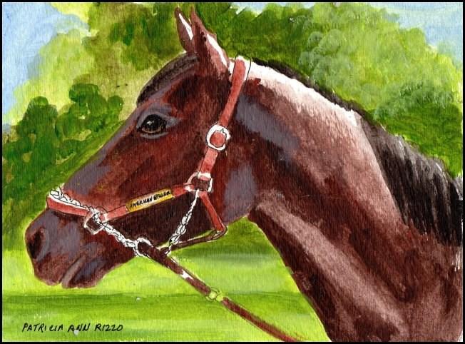 """American Pharoah"" original fine art by Patricia Ann Rizzo"