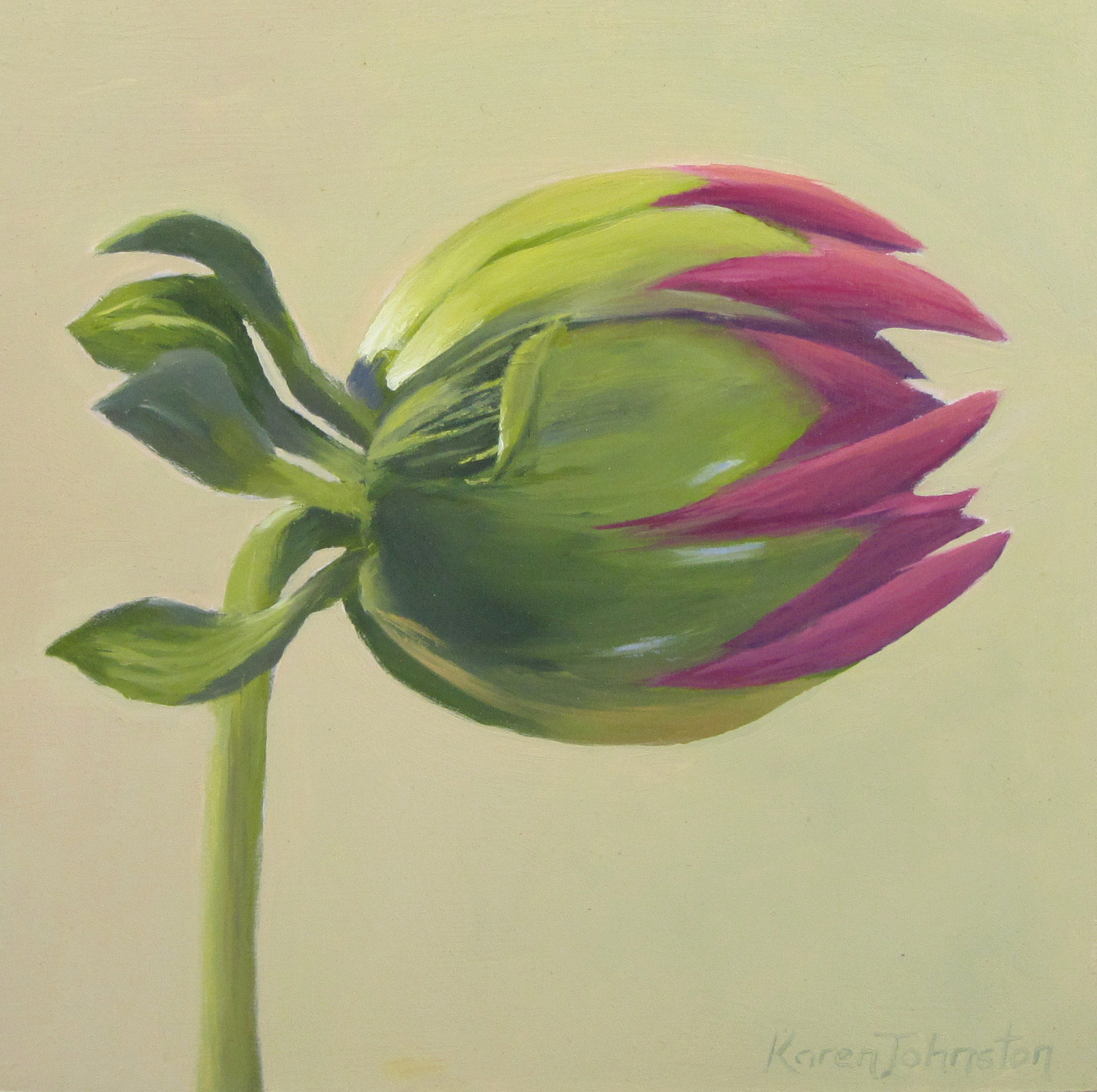 """Dahlia Bud"" original fine art by Karen Johnston"