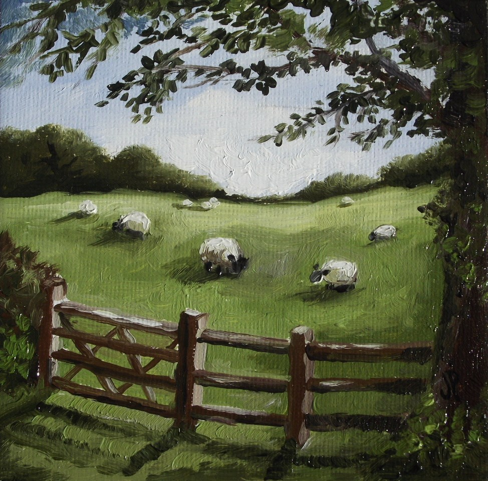 """Sheep"" original fine art by Jane Palmer"
