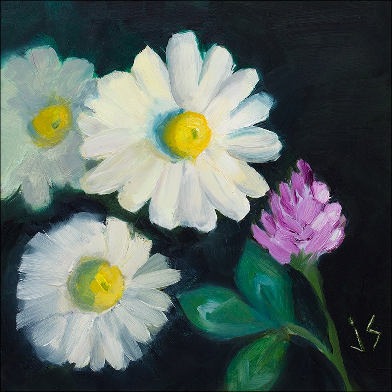 """""""Daisy Divas"""" original fine art by Johnna Schelling"""