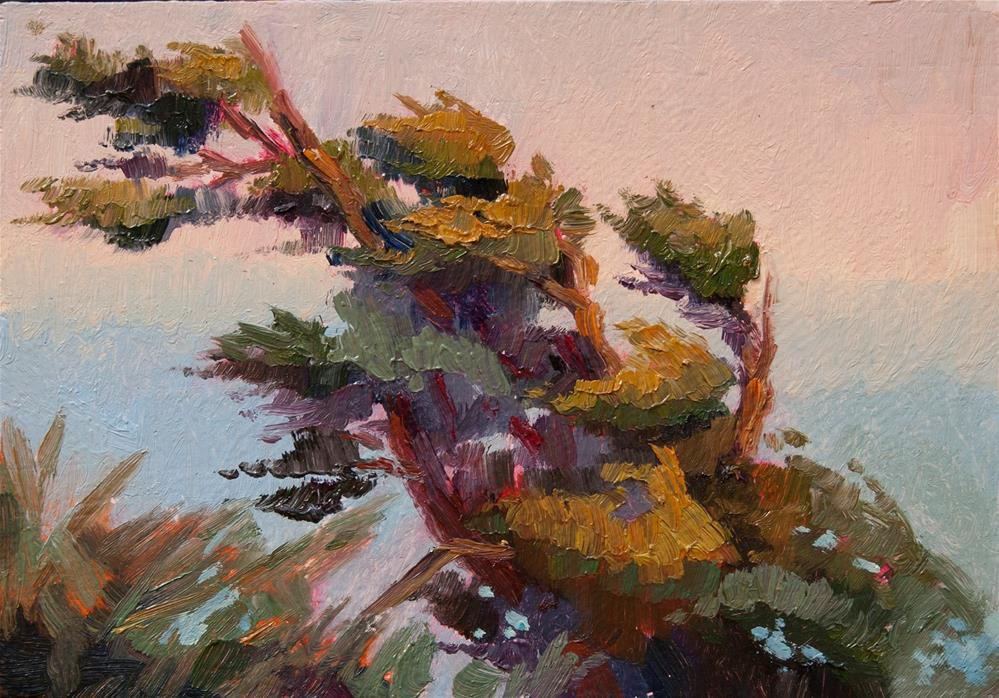 """CLIFFEDGE PINE"" original fine art by Karen E Lewis"