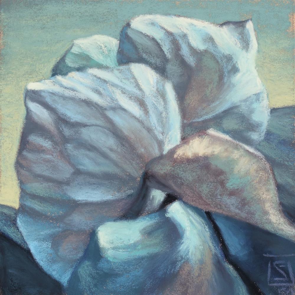 """Upward Spiral Study"" original fine art by Sheila Evans"