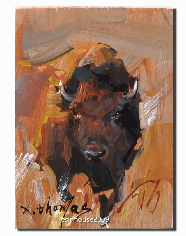 """American bison"" original fine art by Thomas Xie"