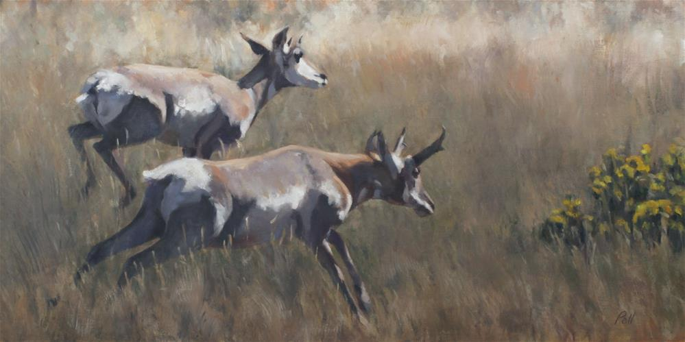 """Antelope Play (framed)"" original fine art by Pamela Poll"