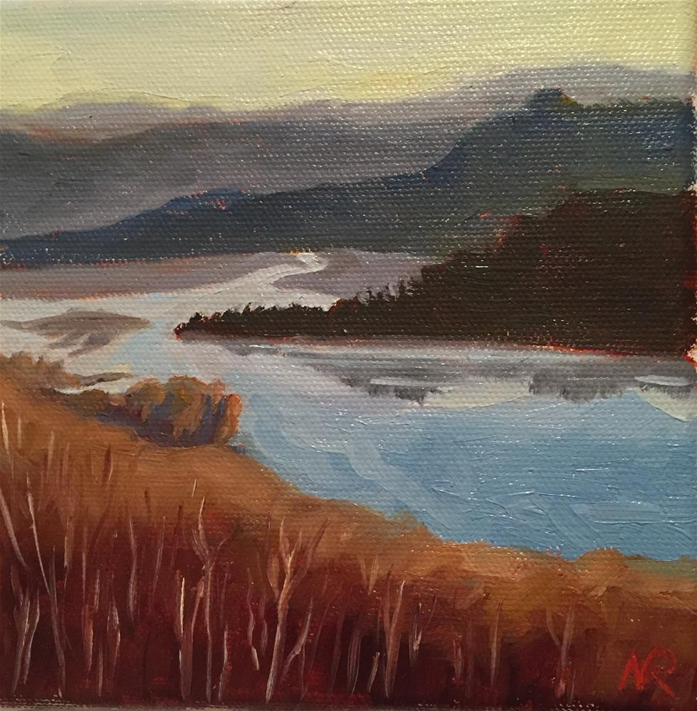 """Salmon River - in late November"" original fine art by Natasha Ramras"