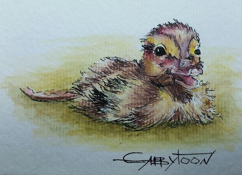 """""""The Duck(ACEO)"""" original fine art by Gabriella DeLamater"""