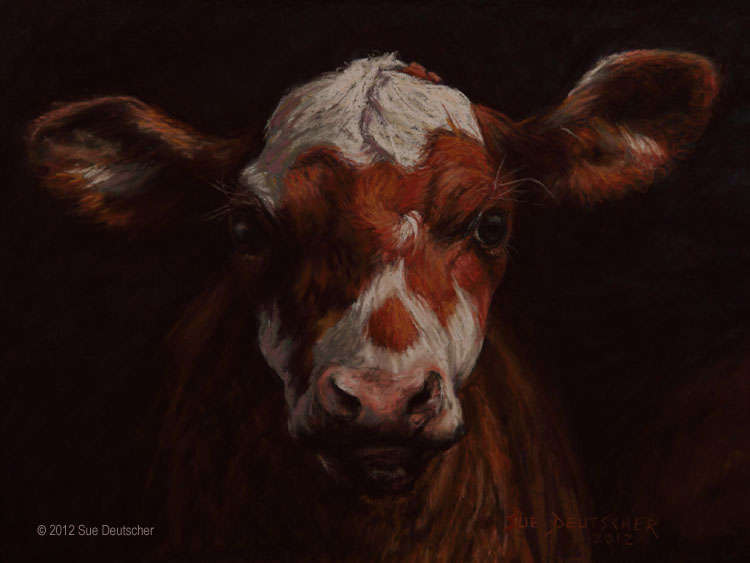 """Curious"" original fine art by Sue Deutscher"