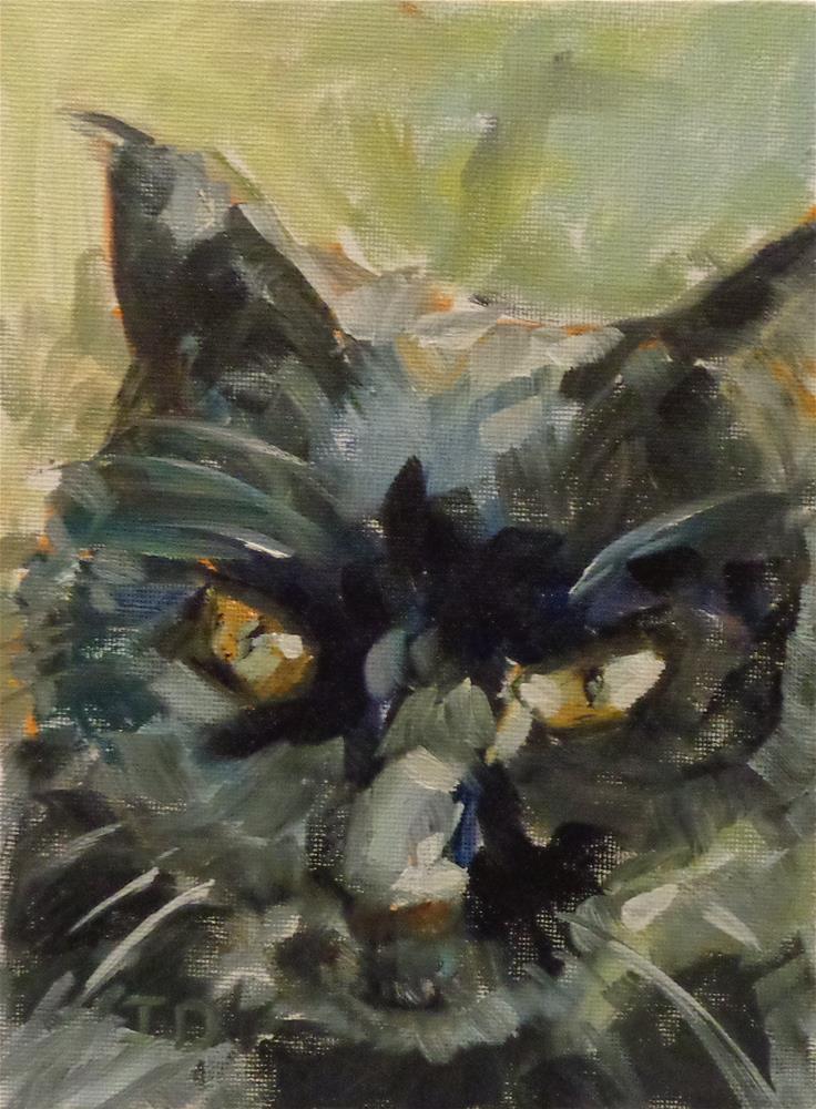 """""""Polly"""" original fine art by Jean Delaney"""
