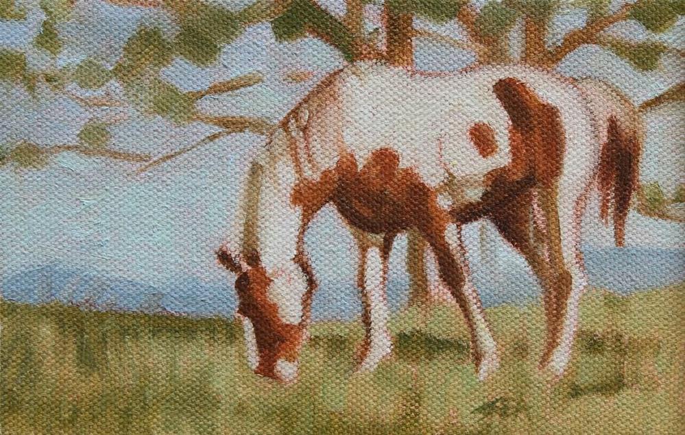 """Meadow XVIII"" original fine art by Susan Ashmore"