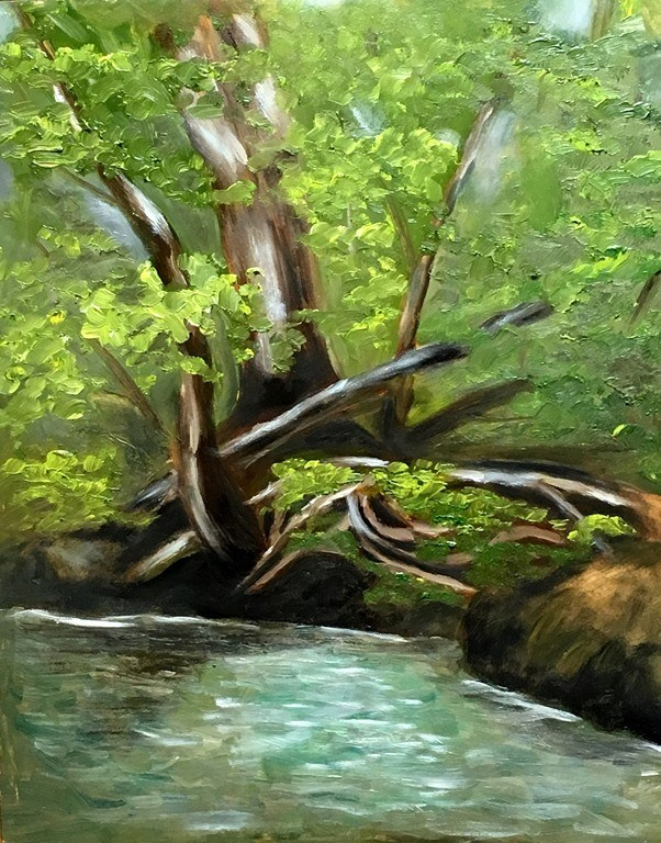 """Turkey Creek Shade"" original fine art by Mary Datum"