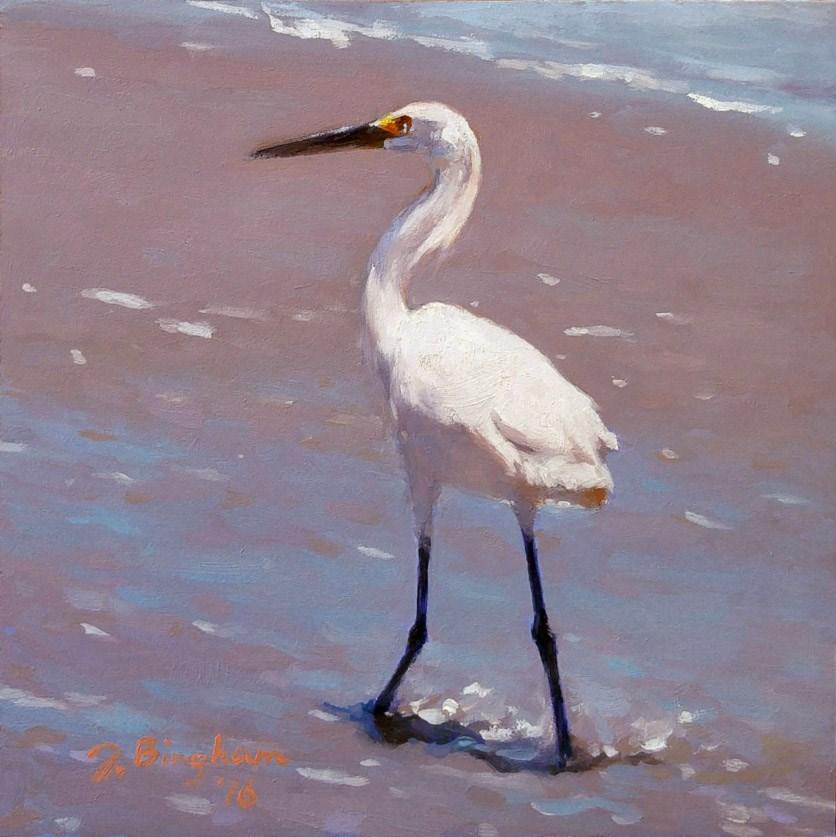 """Snowy Egret -3"" original fine art by Joanna Bingham"