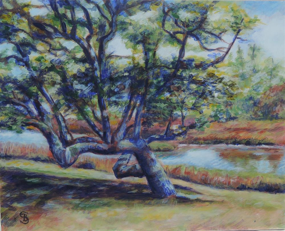 """Yaupon Tree in Beaufort"" original fine art by Belinda Scheber"
