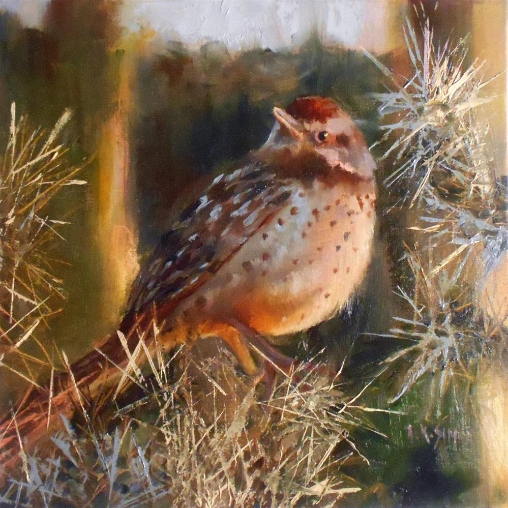 """Arizona Cactus Wren"" original fine art by A.K. Simon"