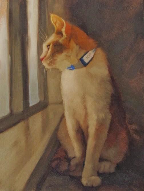 """""""Kirk the shelter cat"""" original fine art by Diane Hoeptner"""