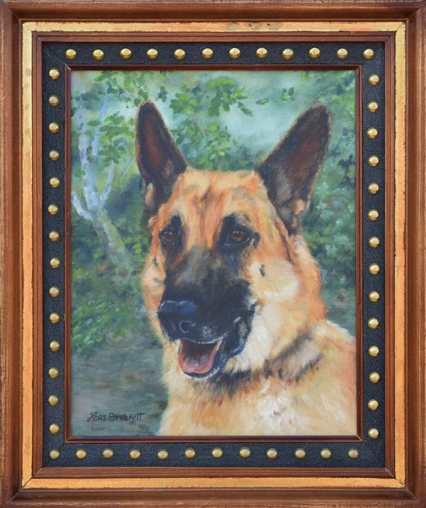 """""""Shep"""" original fine art by Lori Brackett"""