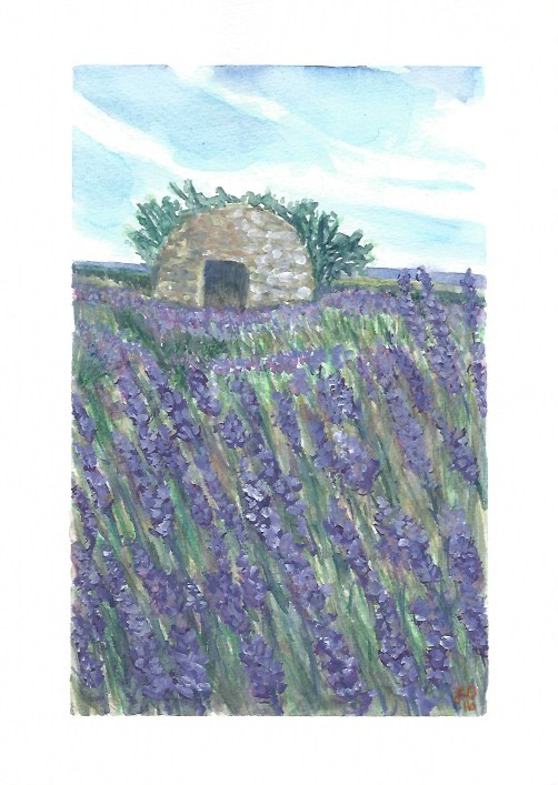 """Borie in  Sault Lavender Field"" original fine art by Laura Denning"