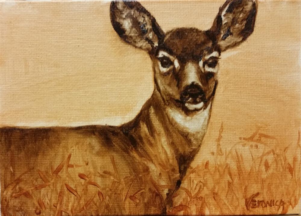 """""""Mule Deer"""" original fine art by Veronica Brown"""