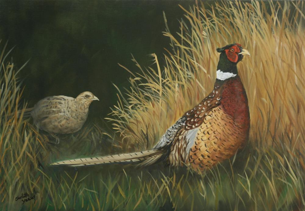 """Pheasants in the Field"" original fine art by Charlotte Yealey"