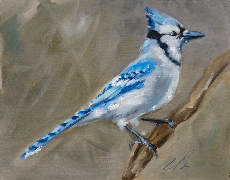 """Bluejay of Happiness"" original fine art by Clair Hartmann"