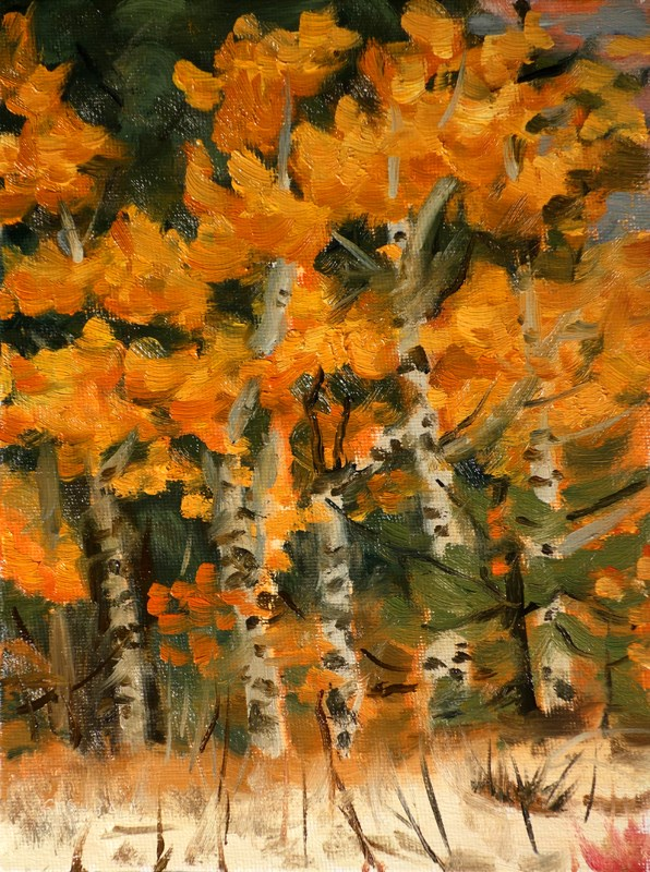 """Fall Aspens"" original fine art by Daniel Fishback"